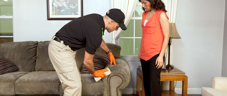 Morgan Hill, CA carpet upholstery cleaning